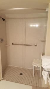 King Suite with Roll-in Shower