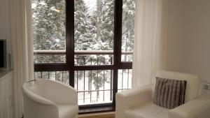 Borovets Holiday Apartments - Different Locations in Borovets, Apartments  Borovets - big - 22