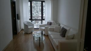 Borovets Holiday Apartments - Different Locations in Borovets, Apartments  Borovets - big - 23
