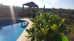 Gozo A Prescindere B&B, Bed and Breakfasts  Nadur - big - 51