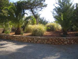Hacienda Encanto del Rio, Apartmány  Es Figueral Beach - big - 66