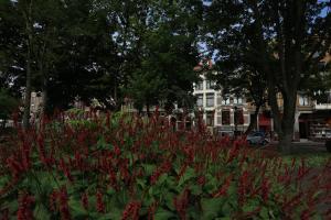 Frederik Park House