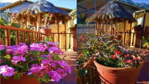 Hostal Andean Moon, Guest houses  Ollantaytambo - big - 56