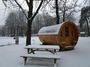 AZUR Waldcamping Auwaldsee, Rezorty  Ingolstadt - big - 19