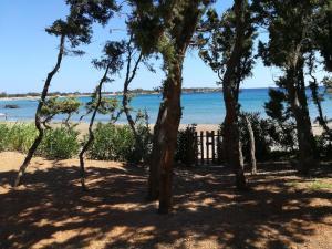 Ktima Grammeno Beachside Villa, Ville  Kountoura Selino - big - 13