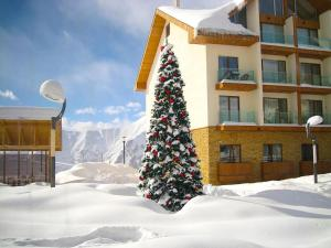 Apartment near gondola, Apartments  Gudauri - big - 23