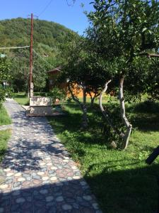 Guest house Zolotoy bereg, Vendégházak  Picunda - big - 7