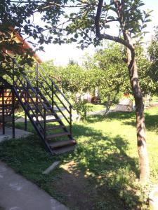 Guest house Zolotoy bereg, Vendégházak  Picunda - big - 29