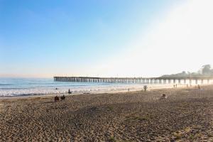 Ocean Air Elegance, Case vacanze  Cayucos - big - 40