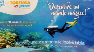 Vacaciones Soñadas, Appartamenti  Cartagena de Indias - big - 53