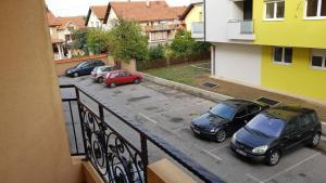 Apartman Gavric, Apartments  Bijeljina - big - 51