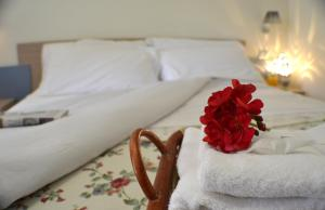 Masseria Asciano, Farm stays  Ostuni - big - 86