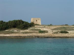 Masseria Asciano, Farm stays  Ostuni - big - 107