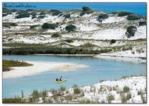 Sails and Trails, Dovolenkové domy  Seagrove Beach - big - 38