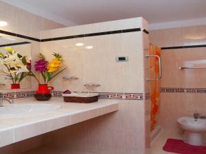 Apartments Sveto, Appartamenti  Rovinj - big - 7
