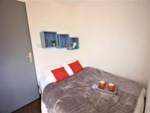 Apartment Bel aure 3, Appartamenti  Saint-Lary-Soulan - big - 6