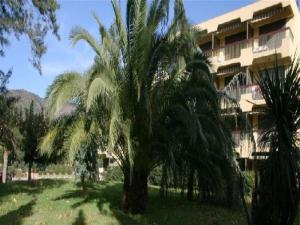 Apartment Parcs du lavandou, Apartments  Le Lavandou - big - 21