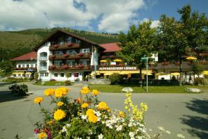 Hotel Alpengasthof Löwen - Oberjoch-Hindelang