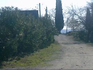 Guest house Zolotoy bereg, Vendégházak  Picunda - big - 21