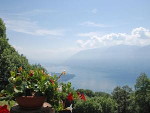 Holiday Home Al Tecion del Nino, Holiday homes  Ronco sopra Ascona - big - 12