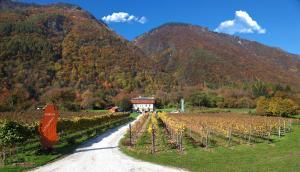Agritur La Polentera - AbcAlberghi.com