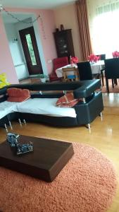 Casa Irina, Ville  Piatra Neamţ - big - 2