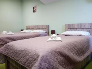 Hotel Salmer, Bed and breakfasts  Tbilisi City - big - 49