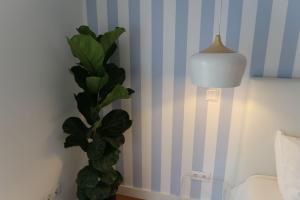 Loving Chiado, Appartamenti  Lisbona - big - 2
