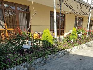 U Norika i Susanny Guest House, Locande  Alakhadzi - big - 24