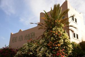 Riad Ain Khadra, Riads  Taroudant - big - 27