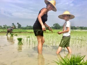 Nguyen Family Homestay, Bed & Breakfast  Ninh Binh - big - 21