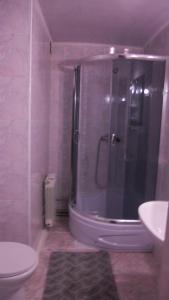 Mini Hotel Furmi, Inns  Skhidnitsa - big - 18