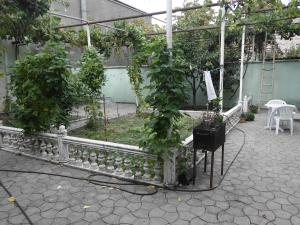 Guest House Nika, Penzióny  Gori - big - 18