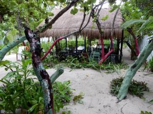 Chancabañita Tulum, Bed & Breakfasts  Tulum - big - 41