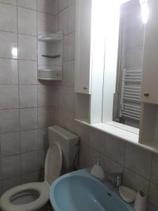 Apartament Pantelimon 17, Appartamenti  Bucarest - big - 6