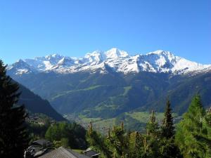 Chalet Puntjak, Horské chaty  Verbier - big - 2