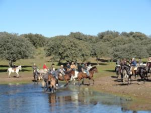 Casa Rural Las Nieves, Ferienhöfe  Garrovillas - big - 17