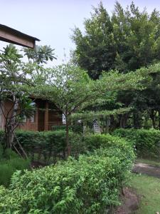 Sripiamsuk resort, Resorts  Ban Bang Phang - big - 12