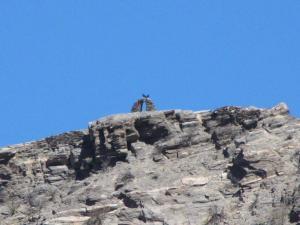 SENTILOSVALLES...POSADA UNO, Hostince  Amaichá del Valle - big - 36