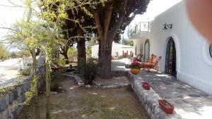 SENTILOSVALLES...POSADA UNO, Inns  Amaichá del Valle - big - 48