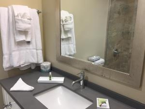 Pacific Shores Inn, Hotely  San Diego - big - 6