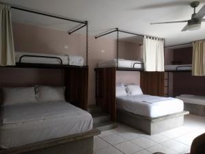 Pachamama Managua, Hostelek  Managua - big - 15