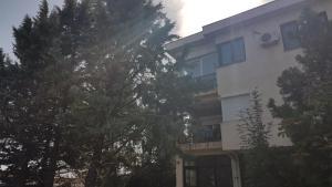 Boj Ana Apartment, Appartamenti  Negotino - big - 7