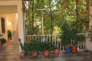 Apartment Dubrovnik 8555a, Apartmanok  Dubrovnik - big - 22
