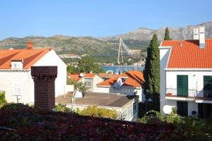 Apartment Dubrovnik 8555a, Апартаменты  Дубровник - big - 11