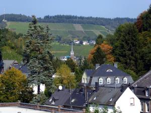 Apartment Weingut Krempel, Apartments  Traben-Trarbach - big - 7