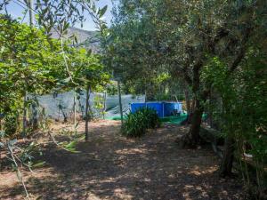 Locazione turistica La Gora, Holiday homes  Massarosa - big - 7