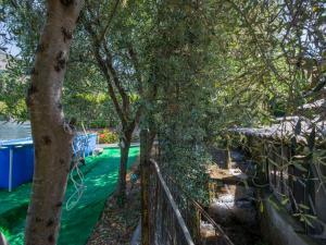 Locazione turistica La Gora, Holiday homes  Massarosa - big - 3