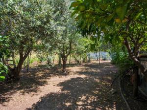 Locazione turistica La Gora, Holiday homes  Massarosa - big - 2