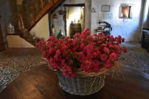 Affittacamere Valnascosta, Guest houses  Faedis - big - 77